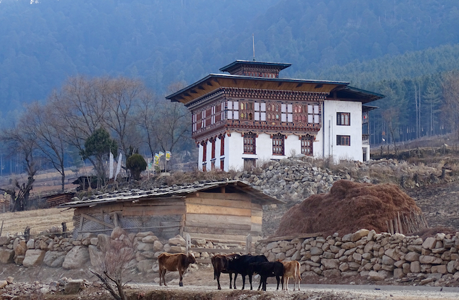 Beautiful Bhutanese architecture in the Punakha Valley - as neat, prosperous and well-organised as a Swiss valley - only this one's in the Himalaya!